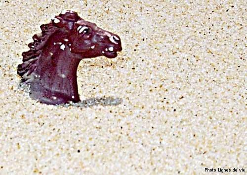 cheval-de-sable