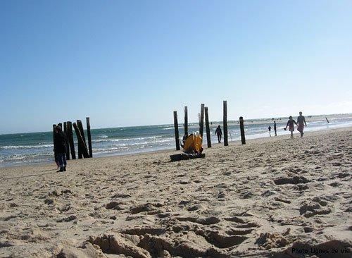 plage-avec-piquets